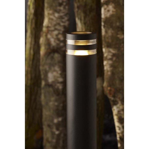Focus Bedlampe 65